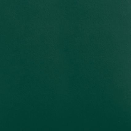 SMOOTH VINYL - Dark Green