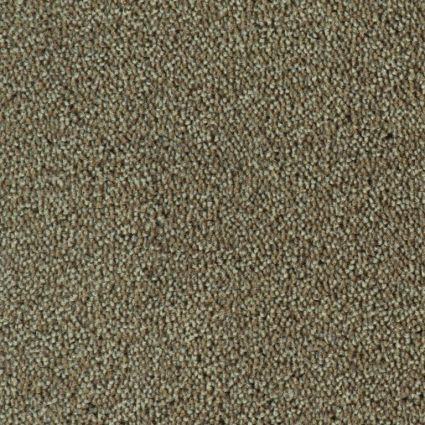 COLOUR KING - 149 Taupe