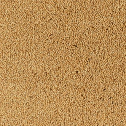 COLOUR KING - 167 Cinnamon