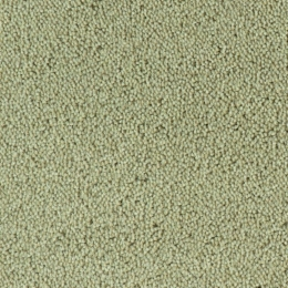 COLOUR KING - 129 Cement