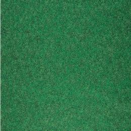 XPERIENCE - Sport Grass