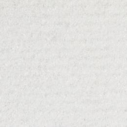 LAS VEGAS - 1703 Snow