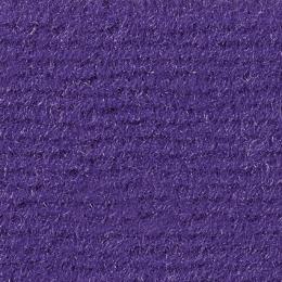 LAS VEGAS - 4717 Purple
