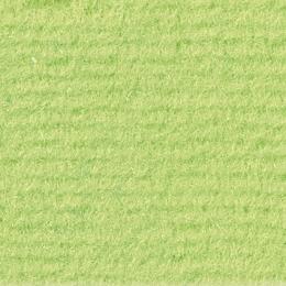 LAS VEGAS - 6720 Lime