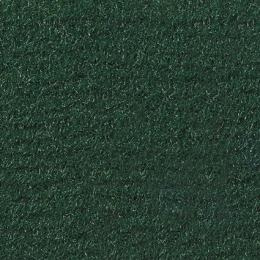 LAS VEGAS - 6722 Forest